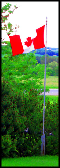Canadian Flag flies in a rural setting