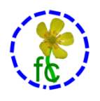 "A dashed blue circle encloses a flower and the letters F C for ""free culture"" as a logo of liberation"
