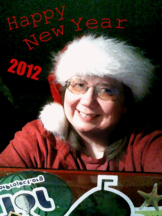 Laurel wearing a Santa hat behind her netbook under text reading: Happy New Year 2012