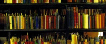 Book Shelf ~ Kelly Library